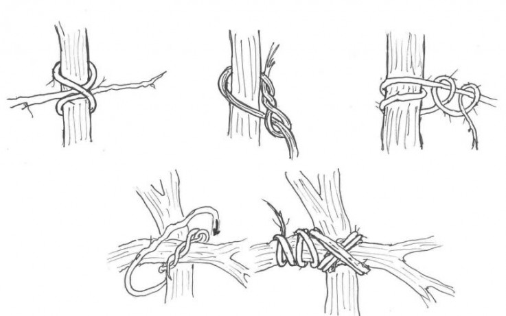Rope Knots: How to Tie the 10 Most Useful Knots for Outdoor Survival